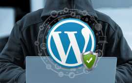 securitate wordpress
